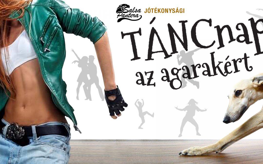 JÓTÉKONYSÁGI TÁNCNAP AZ AGARAKÉRT – 2019.03.09.