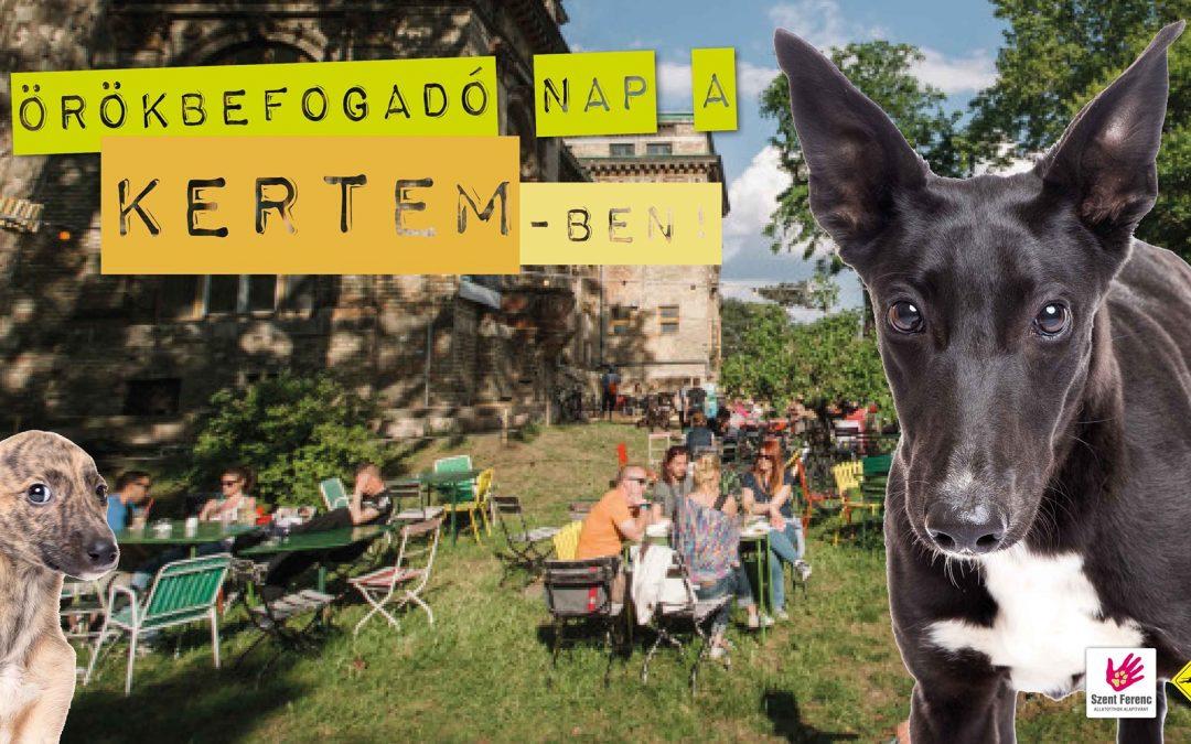 III. ÖRÖKBEFOGADÓ NAP A KERTEMBEN – 2019.08.31.